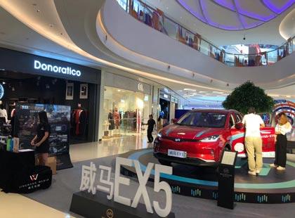 威马深圳市光明新区大仟里静态展示活动